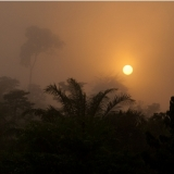 Sunrise at Kakum