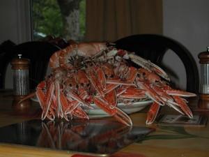 Lochaline meal
